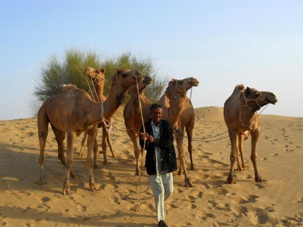 india darshan  desertul