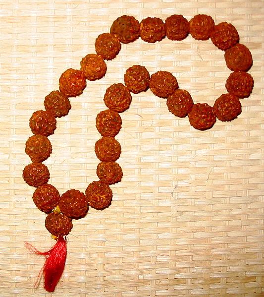 533px-Rudraksha_beads