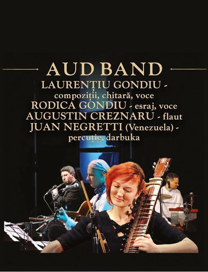 trupa-aud-band-concert