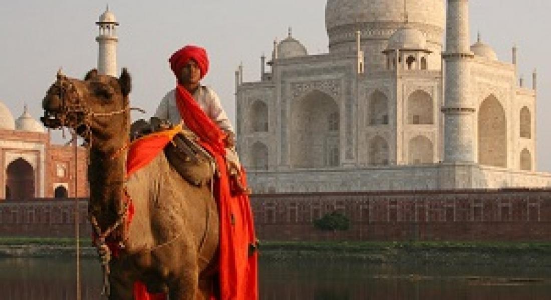 Marele Tur al Indiei de Nord, 7-17 noiembrie 2013