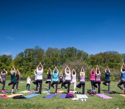 Curs demonstrativ de Satyananda Yoga